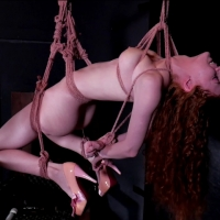 PV-abey-rain-violet-wand-suspension-08