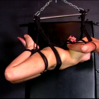 PV-marie-mccray-suspension-03