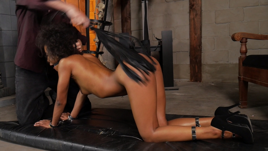 PV-demi-sutra-trained-03
