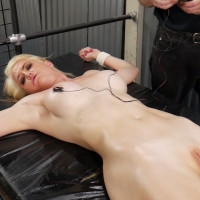 PV-kit-mercer-interrogated-04
