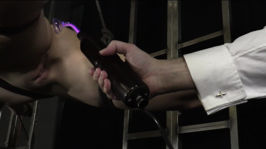 PV-stephie-staar-violet-wand-06