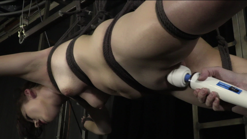 PV-stephie-staar-violet-wand-09