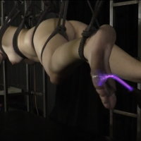 PV-stephie-staar-violet-wand-07
